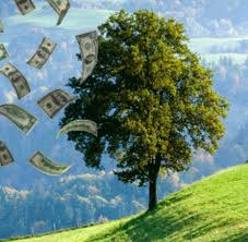 10 Magical Steps to Fulfilling Your Prosperity Dream