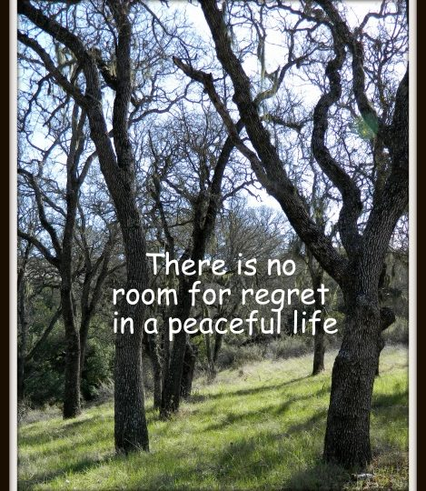There is no room for regret in a peaceful life…