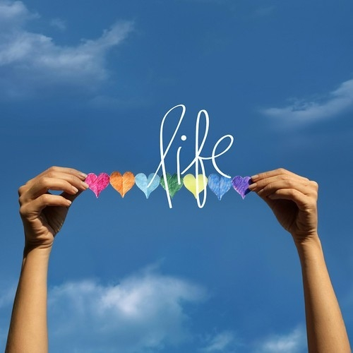 LOVING the LIFE your Live (Living the Life you Love)
