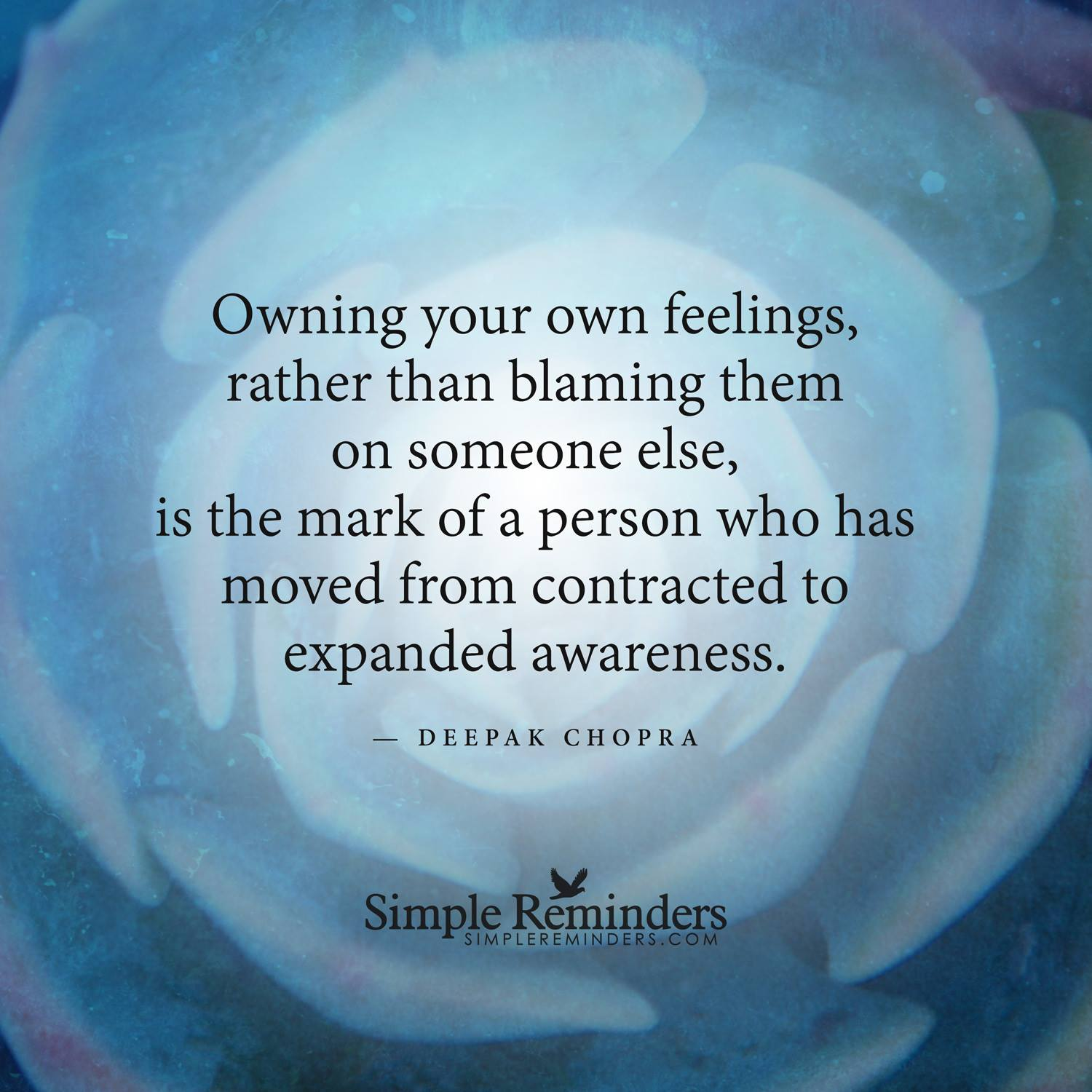 owning-our-feelings