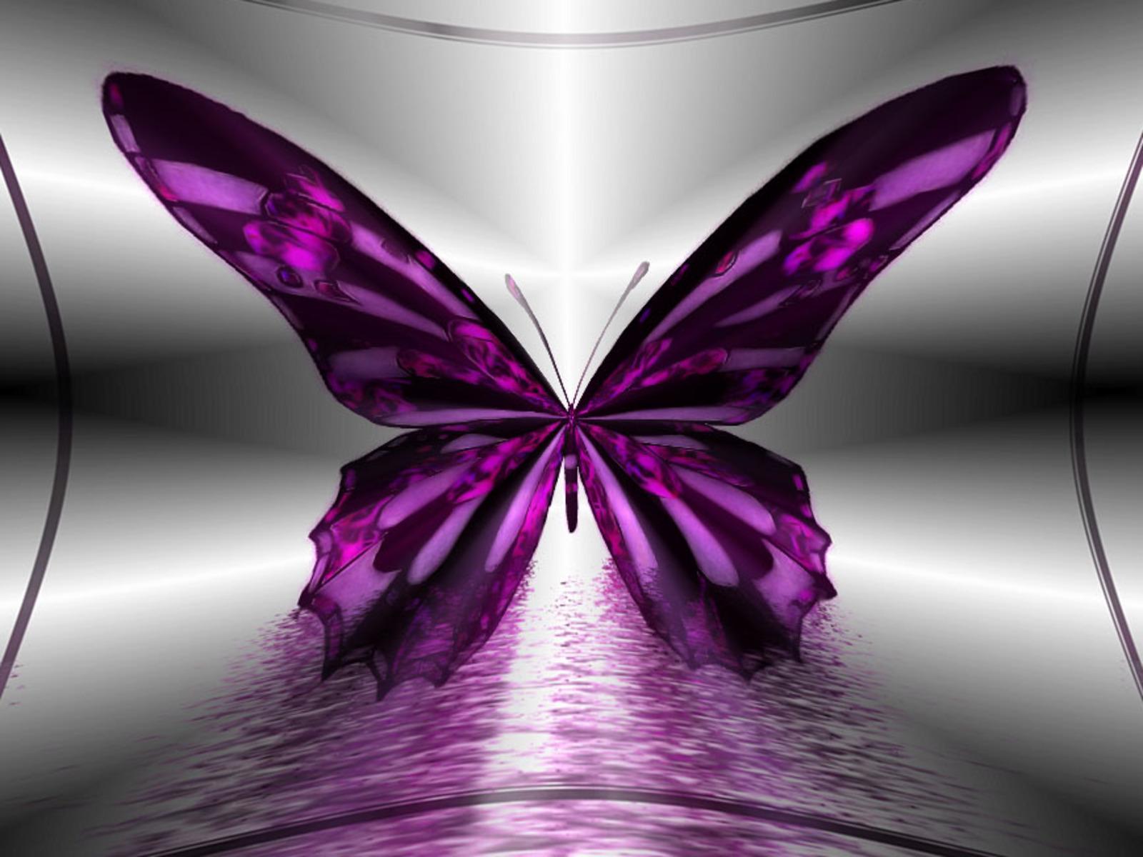 amazing-purple-butterfly-hd-pc-wallpaper