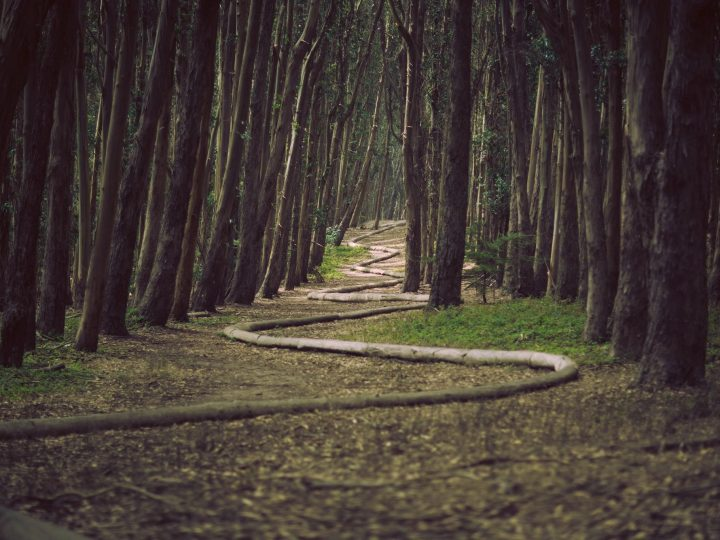 Healing Emotional Trauma